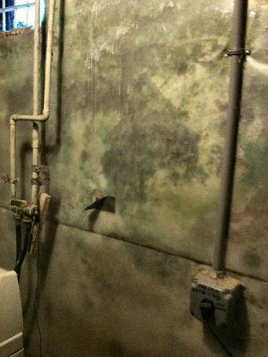 Mold Grows Behind Vapor Barrier